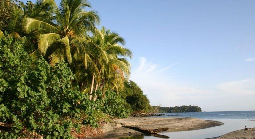 ponant-amazonas2