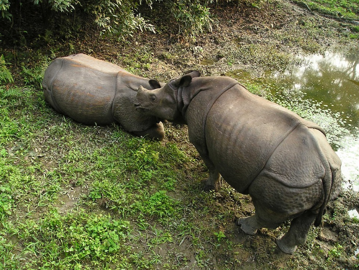 Maravilhas do Nepal